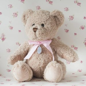 Personalised Bramble Bear